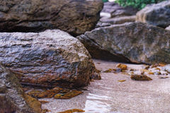 Close up of rocky shore texture background Stock Photo
