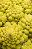 Close-up Romanesco cauliflower Stock Photos