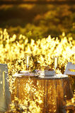 Close up romantic dinner Royalty Free Stock Images