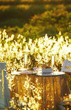 Close up romantic dinner Royalty Free Stock Photos