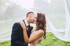 Close up romantic portrait of beautiful wedding couple under the veil . Stock Images