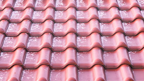 Close-up of roof tiles Stock Photo