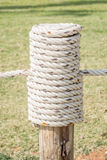 Close up rope tired in wooden pole with green grass backgrou Stock Photos