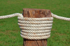 Close up rope tired in wooden pole with green grass backgrou Royalty Free Stock Photo