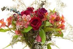 Close-up Rose Bouquet Stock Photo