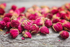 Close up of rose buds stock photo