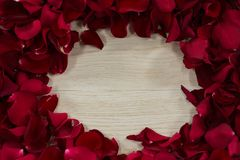 Rose petals arranged on wooden table. Close-up of rose petals arranged on wooden table stock image