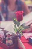 Close up of Rose in restaurant and woman with menu choosing dishes at restaurant on a blurred background. Bali island.  Stock Images
