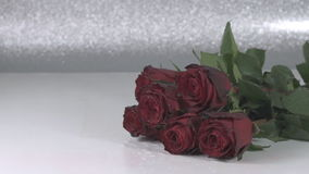 Close up of roses bunch falling down. Slow motion with water splash stock footage