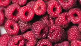 Close up rotation loopable berry. Fresh, juicy raspberry background, ripe. Macro red raspberries fruit. Fresh raspberry. Close up berry. Fresh, juicy raspberry stock footage