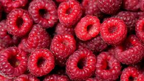 Close up rotation loopable berry. Fresh, juicy raspberry background, ripe. Macro red raspberries fruit. Fresh raspberry. Close up berry. Fresh, juicy raspberry stock video footage