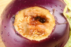 Close up of Rotten egg plant Stock Photography