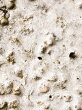 Close up of rough cobbled white texture of stone wall Stock Images