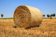 Close up of a round, golden hay bale on a reaped wheat field against blue sky Royalty Free Stock Photos