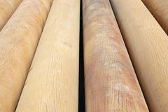 Round log. The close-up of round logs Stock Images