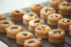 Tasty dessert cakes lined up on counter. Close-up of a row of tasty dessert cakes topped with blackberries lined up on a counter with shallow depth of field royalty free stock images