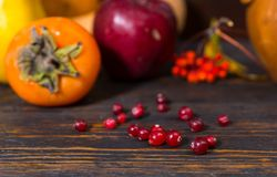 Close up of rowan berries near harvest of apples and pumpkins ly Stock Photo