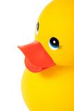 Close Up Rubber Duck Stock Image