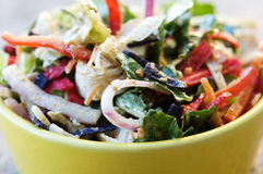 Close up of rustic salad Royalty Free Stock Photography