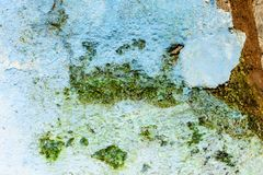 Close-up of rustic, weathered exterior wall, Central America royalty free stock photo