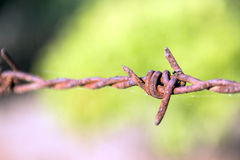 Close up Rusty barb wire Stock Photo
