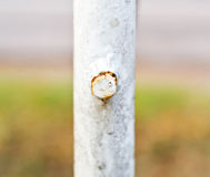 Close up of a rusty bolt. Stock Photos