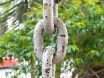 Close up of rusty chain links in the foreground. Close up of rusty chain links in foreground, with green on background Stock Images