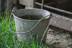 Close up of rusty iron bucket in grass in the garden. Dirty gray metallic bucket with garbage on barnyard at sunny day Stock Images