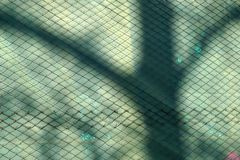 Metal chainlink fence. Close up of rusty metal chainlink fence over a wall with a tree shadow over it Royalty Free Stock Photo