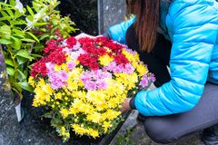 Close-up of a Sad Woman Holding Fowers in front of a Loved one's stock photography