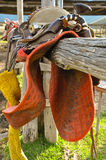 Close up of saddle in a stable. Royalty Free Stock Image