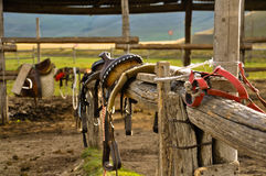 Close up of saddle in a stable. Stock Images