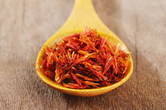 Close up of safflower Royalty Free Stock Photography