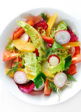 Close-up of salad Royalty Free Stock Photos