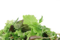 Close up of salad mix. Macro. Stock Image