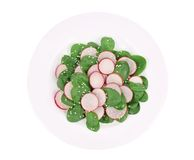 Close up of salad with radish and spinach. Stock Photos
