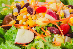 Close-up Salad with vegetables and greens. Salad with vegetables and greens Stock Photography
