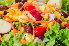 Close-up Salad with vegetables and greens. Salad with vegetables and greens Royalty Free Stock Images