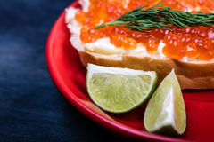 Close up of salmon caviar on bread Royalty Free Stock Images