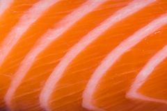 Close up of salmon fillet. Macro Royalty Free Stock Photography
