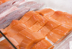 Close-up of salmon fillet Stock Photography
