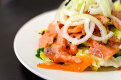 Close up of salmon salad Royalty Free Stock Photography
