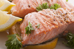 Close up of salmon steak Royalty Free Stock Images