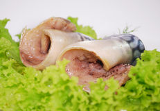 Close-up Salted herring with onion and spices isolated on a white Royalty Free Stock Image