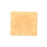 Close up of saltine soda cracker. Stock Photography