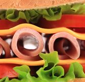 Close up sandwich with fresh vegetables. Stock Photography
