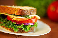 Close up of sandwich. Shalow DOF. Selective focus Stock Photos