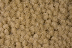 Close Up Sandy Brown Carpet Background Stock Image