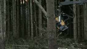 Close up on saw on forestry harvester. When cutting logs stock video