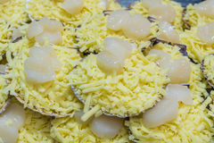 Close-up of scallops with cheese. Ready to be cooked Stock Images
